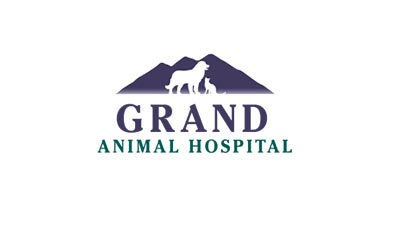Grand Animal Hospital Identity